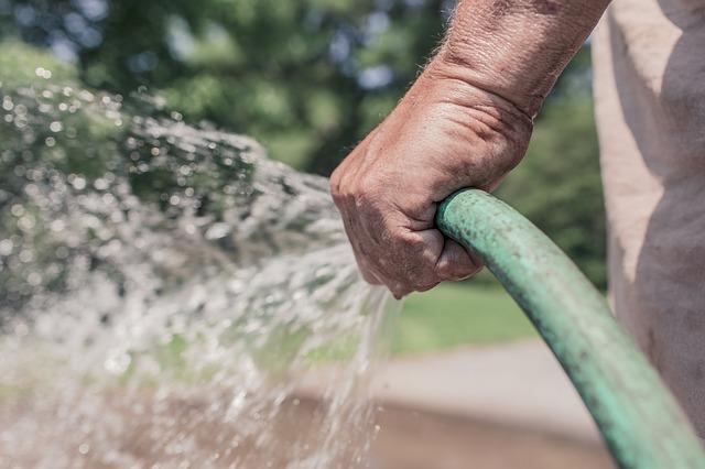 garden hose - watering garden