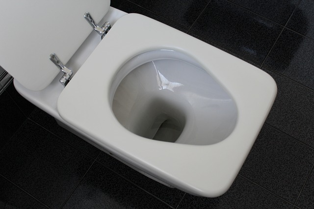 installing a new toilet