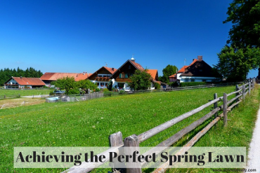 Achieving the Perfect Spring Lawn