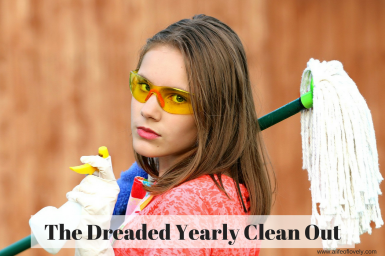 The Dreaded Yearly Clean Out