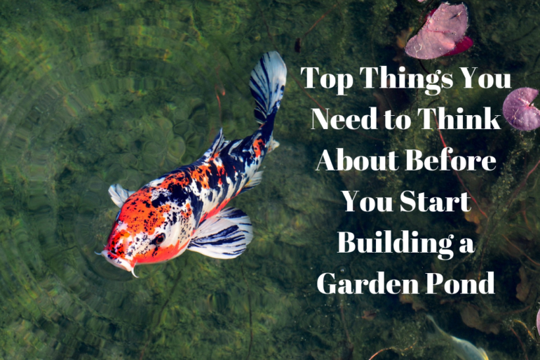 Top Things You Need to Think About Before You Start Building a Garden Pond