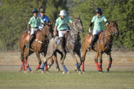 5 Reasons Why Polo Is The Ultimate Sport For Players Of All Levels