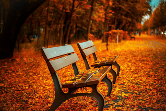 3 Reasons to Spend More Time Outside Each Day
