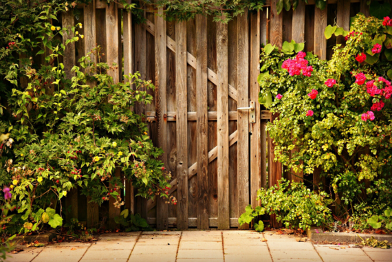 3 Ways to Keep Little Critters Out of Your Garden